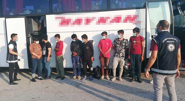 Otobüs bagajında kaçak göçmen yakalandı